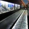 Museu da Lâmpada